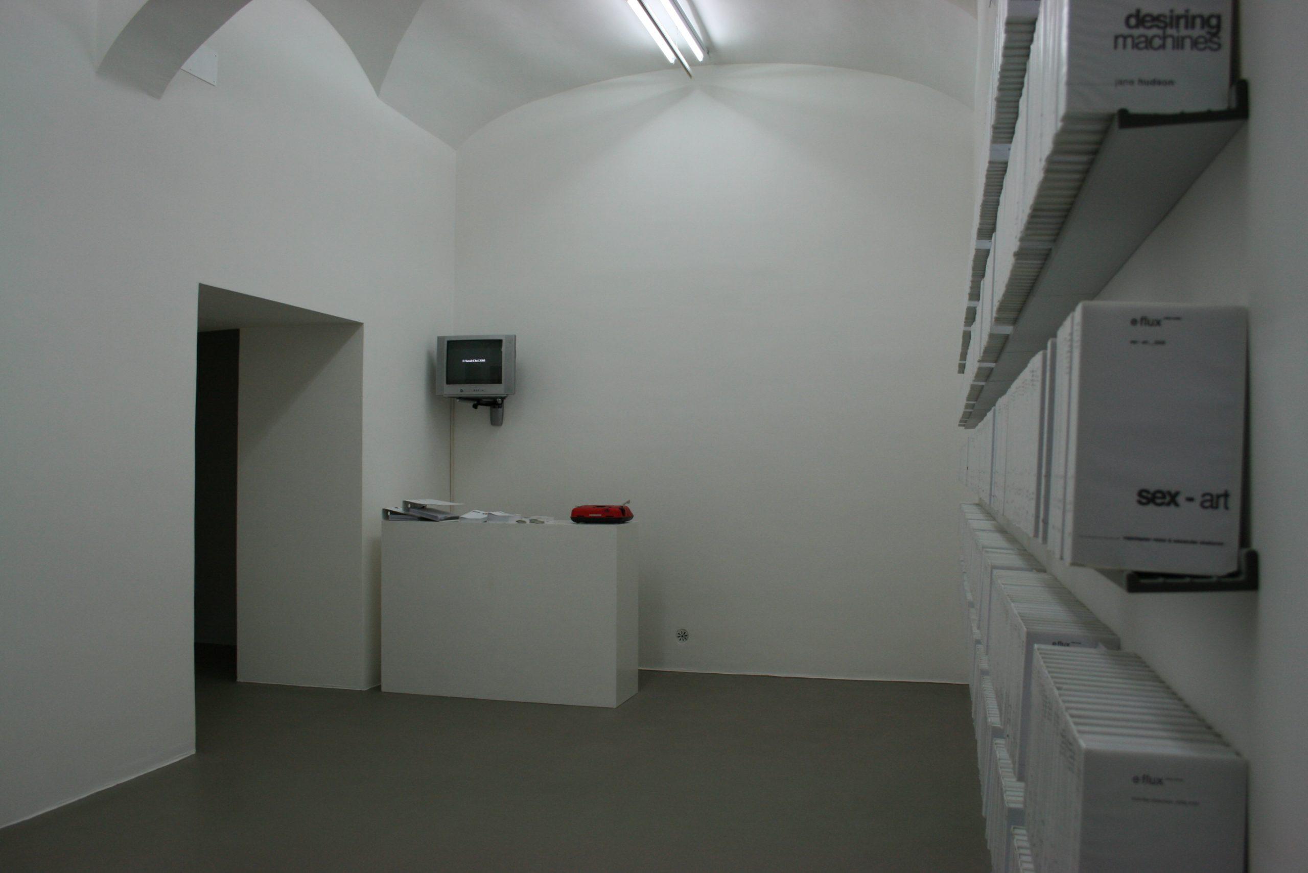 e-flux video rental, Anton Vidokle & Julieta Aranda Fondazione Giuliani, Roma, 2010, veduta dell'installazione