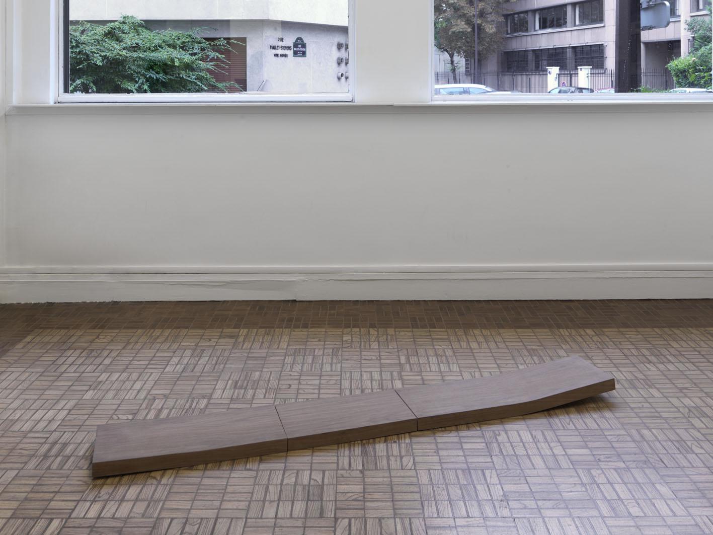 Becky Beasley Plank III (Covering Ground), 2008