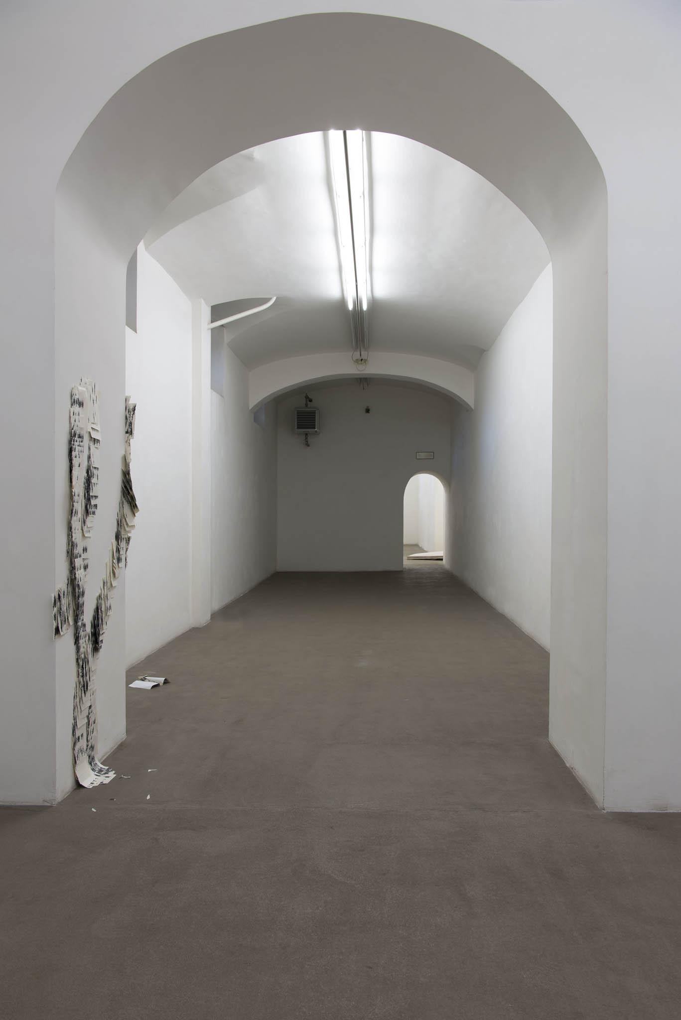 4.Stamen Papers Installation view, Roma, 2016, foto Giorgio Benni